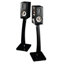 Raidho Acoustics XT-1 (Black Piano)