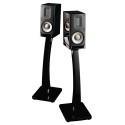 Raidho Acoustics XT-1 (Black Piano)